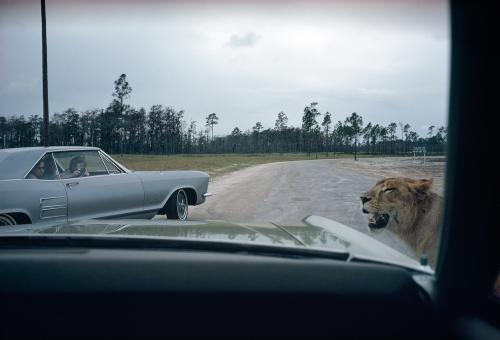 Florida, 1970