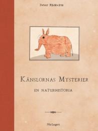 Känslornas-mysterier-640x854
