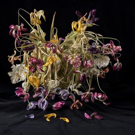 Blossom_Anna-Halm-Schudel_01_Tulpen-Bouquets[1]