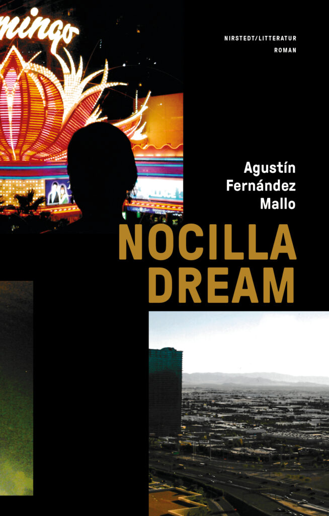 Agustin-Fernandez-Mallo-Nocilla-dream-1-654x1024